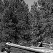 Ddp Djd B And W 1880's Cabin Ruins In Montana 3 Art Print