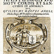 De Motu Cordis, Title Page, William Art Print