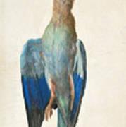 Dead Blue Roller Art Print