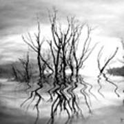 Dead Trees Bw Art Print