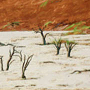 Dead Vlei Namibia Art Print