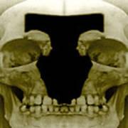 Death Duo Art Print