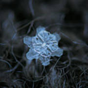 December 18 2015 - Snowflake 2 Art Print by Alexey Kljatov