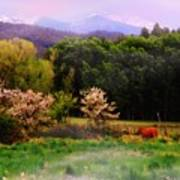 Deep Breath Of Spring El Valle New Mexico Art Print