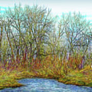 Deep Forest River Art Print