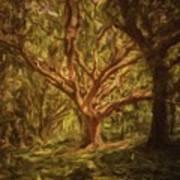 Deep In Sherwood Art Print