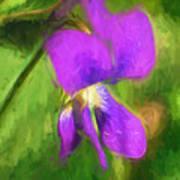 Deep Purple - Wildflower Art Art Print