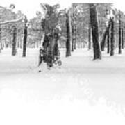 Deep Winter II Art Print