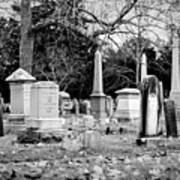 Deep Within Evergreen Cemetery Art Print