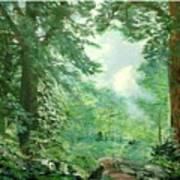 Deep Woods Path Art Print