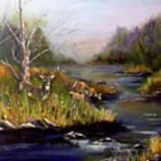Deer By The Stream Art Print