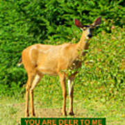 Deer To Me Art Print