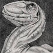 Deino Hatch Sketch Art Print