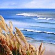 Del Playa Art Print