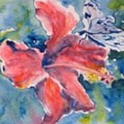 Delicate Butterfly Art Print