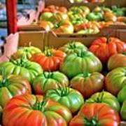 Delicious Tomatoes Art Print
