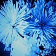 Delightfully Blue Art Print