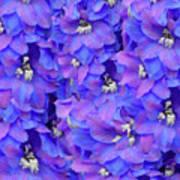 Delphinium Blue Art Print