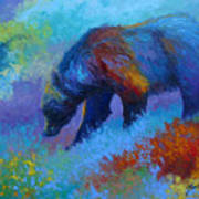 Denali Grizzly Bear Art Print by Marion Rose