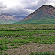 Denali National Park Landscape 3 Art Print