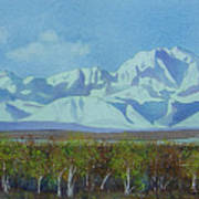 Denali Park Alaska Art Print