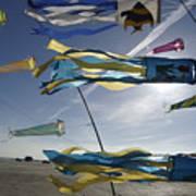 Denmark, Romo, Kites Flying At Beach Art Print