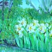 Dependable Daffodils Art Print