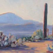 Desert Afternoon Art Print