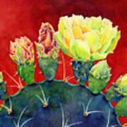 Desert Bloom 3 Art Print