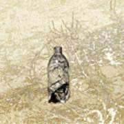 Desert Bottle Art Print