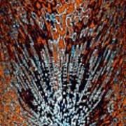 Desert Brambles Art Print