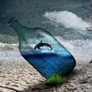 Desert Dolphin Bottle Nature Art Print