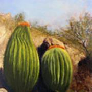 Desert Friends Art Print