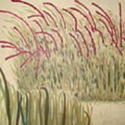 Desert Grasses Art Print