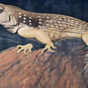 Desert Iguana Mural Art Print