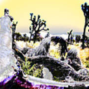 Desert Landscape - Joshua Tree National Monment Art Print