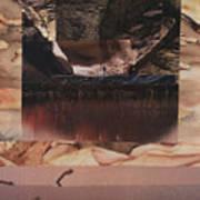 Desert Light - Bgdel Art Print