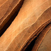 Desert Lines Art Print