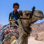 Desert Locomotion Art Print