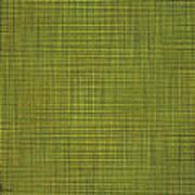 Desert Marigold Flowers Abstract Art Print