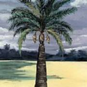 Desert Palm 2 Art Print