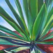Desert Plant Art Print