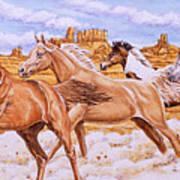Desert Run Art Print by Richard De Wolfe