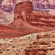 Desert Scene L Art Print