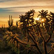 Desert Sunshine Shining Through  Art Print