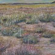 Desert Symphony Art Print