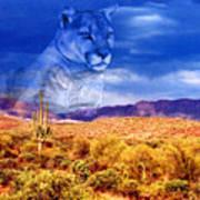 Desert Visions Art Print by Lorraine Foster