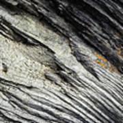 Detail Of Dry Broken Wood Art Print