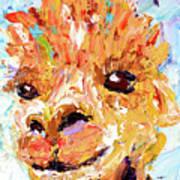 Detail Of Shorn Alpaca. Where's My Fleece? Art Print