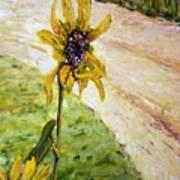 Detail Slunecnic3 Art Print